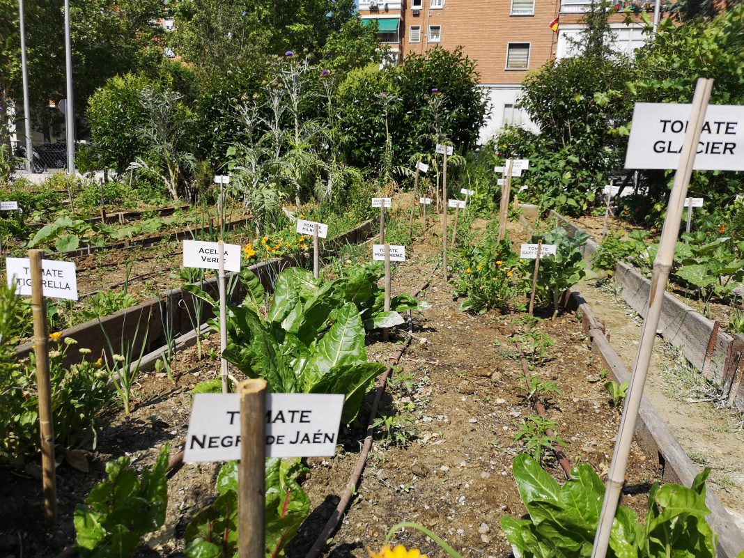 jardín botánico comestible chamartín